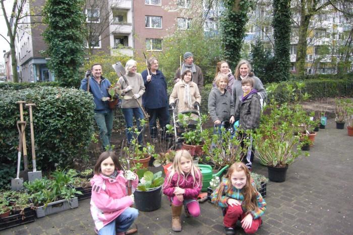 Hortensien pflanzen220314-018