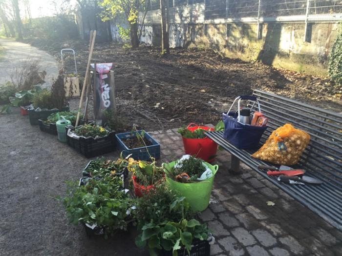 Alle Pflanzen, Zwiebeln und Geräte stehen bereit